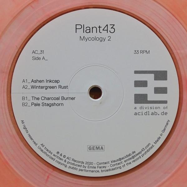 Plant43